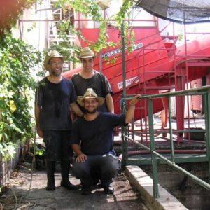 צוות עובדי ייצור יין קונדיטון